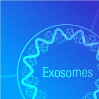 Extracellular Vesicle Isolation Kits