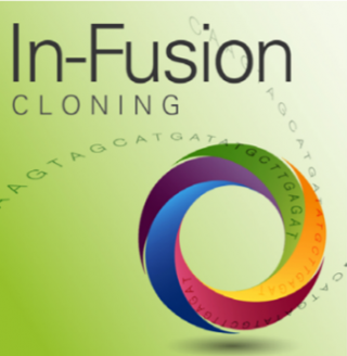 In-Fusion Cloning Kits